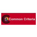 International Common Criteria EAL 3+ Certification